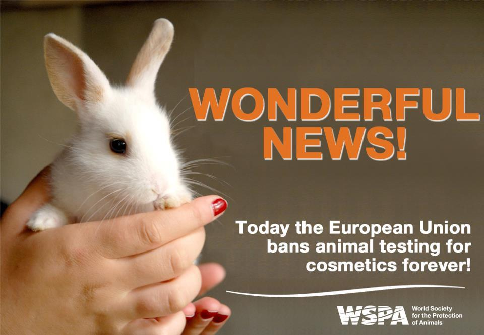 an argument against animal testing in cosmetics Cosmetic testing with animals is cruel - the cruelty of cosmetic testing on animals each year, thousands of animals are brutally tortured in laboratories, in the name of cosmetic research a movement to ban animal testing for cosmetic purposes has been gaining popularity, with many companies hopping on the bandwagon against this.