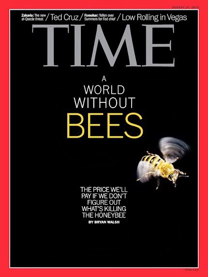 Copertina Time Magazine Agosto 2013 A world without Bees
