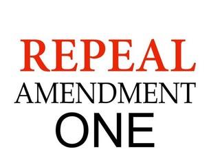 Katya Repeal NCamendment-One